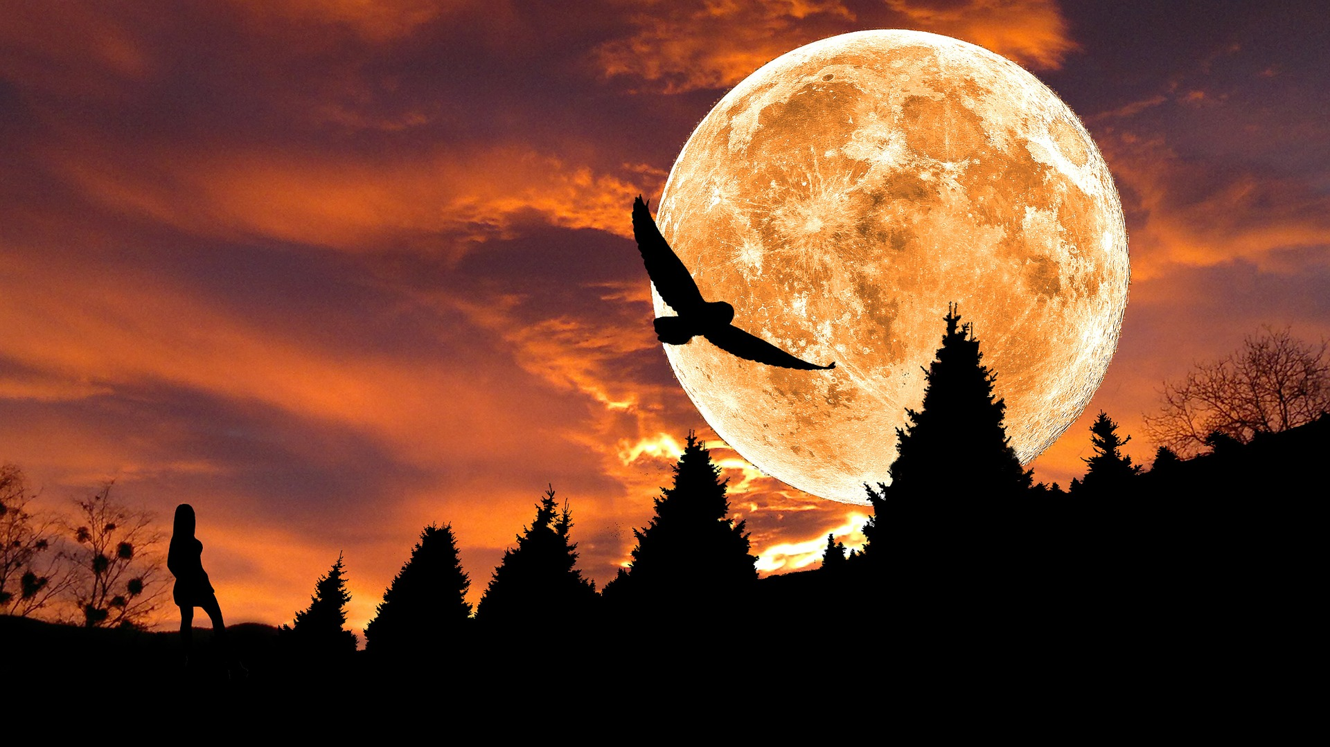 ハーベストムーンは中秋の名月!1年で最も美しい月の由来とおまじない&呪文+心理占い