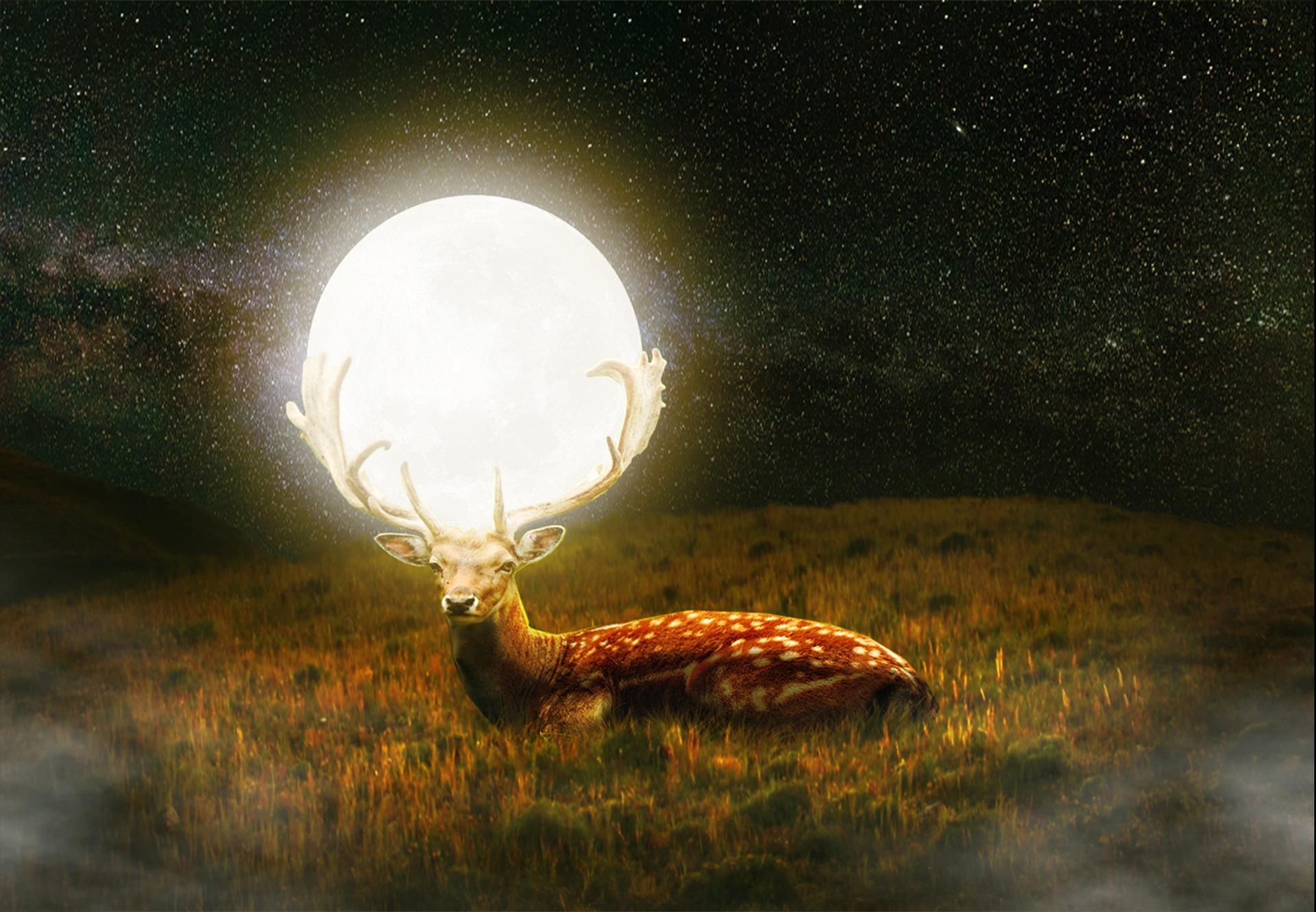ハンターズムーンは秋の収穫を祝う満月|おすすめの待ち受け画像+パワーをもらえるおまじない&すべきこと