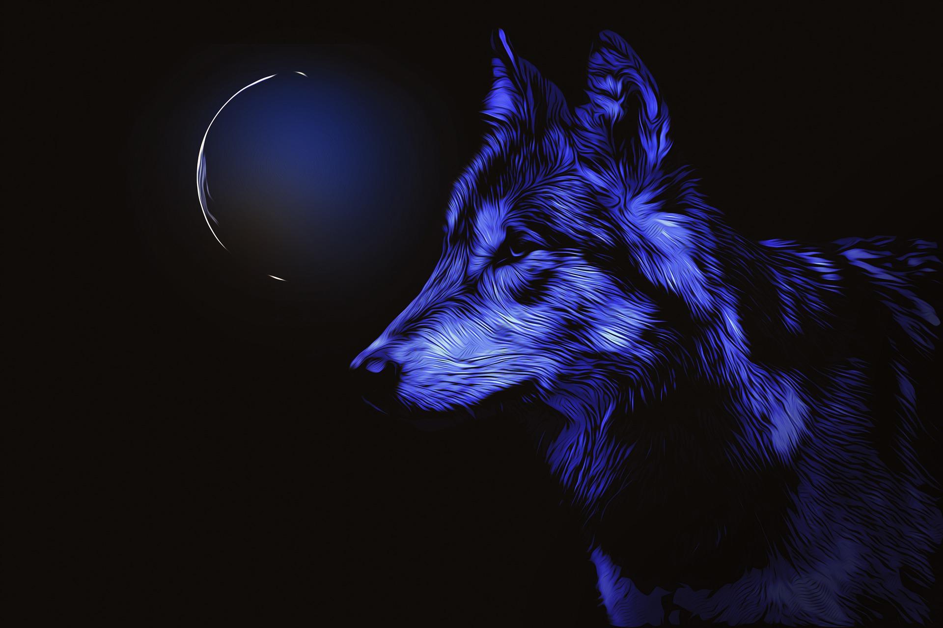 2022年1月18日(火)は今年最初のスーパームーン「ウルフムーン」に何を願う?満月を見る時に注意することや由来&スピリチュアル+おまじない